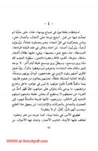 رواية في بلاد نون pdf لأحمد المديني تحميل مباشر وسريع 2