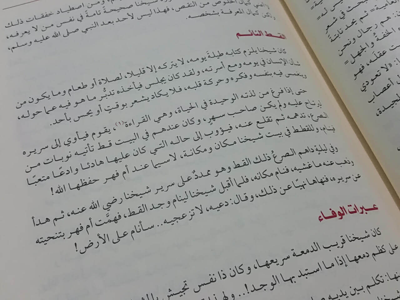 ظل النديم pdf تأليف وجدان العلي في سيرة الشيخ محمود محمد شاكر 1