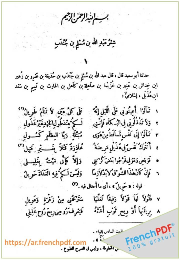 شرح أشعار الهذليين pdf راجعه الشيخ محمود محمد شاكر 6