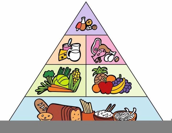 الدليل الشامل لتخفيف الوزن ومقاومة الشيخوخة والوقاية من الشحوم PDF